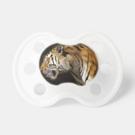 Amur Tiger in Profile Baby Pacifiers