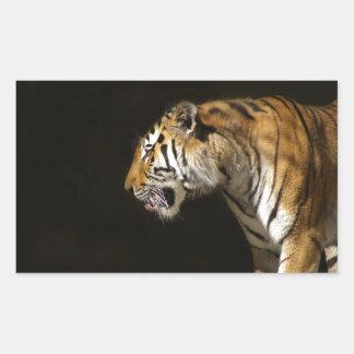 Amur Tiger in Profile Rectangular Sticker