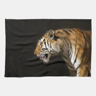 Amur Tiger in Profile Towel