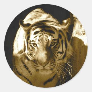Amur Tiger in Sepia Classic Round Sticker