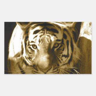Amur Tiger in Sepia Rectangular Sticker