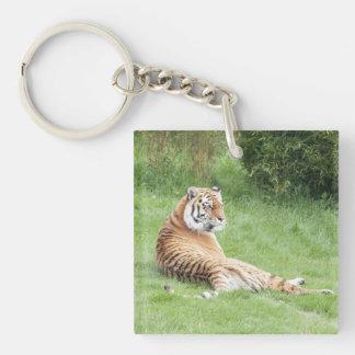 Amur Tiger Keycahin Single-Sided Square Acrylic Keychain