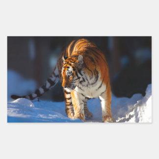 Amur Tiger on white snow Rectangular Stickers