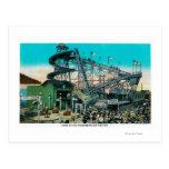 Amusement Rides at the Pike, Long Beach Postcard