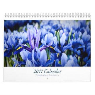 Amy's 2011 Calendar