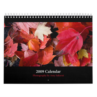 Amy's 2009 Calendar