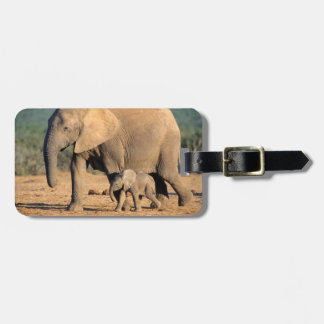 An African Elephant mother and calf on the move Bag Tag