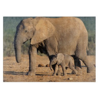 An African Elephant mother and calf on the move Cutting Board