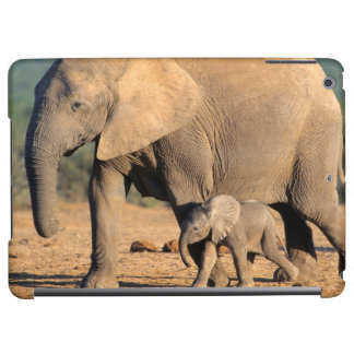 An African Elephant mother and calf on the move iPad Air Covers
