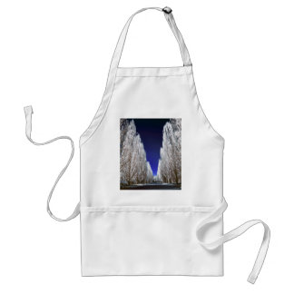An alley in infrared apron