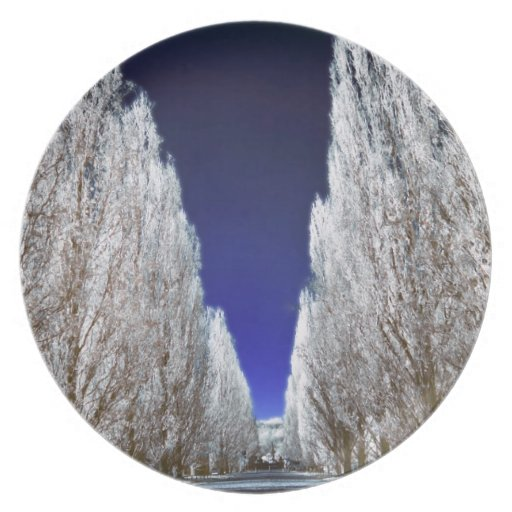 An alley in infrared plate