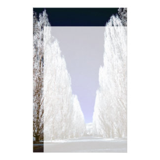 An alley in infrared stationery