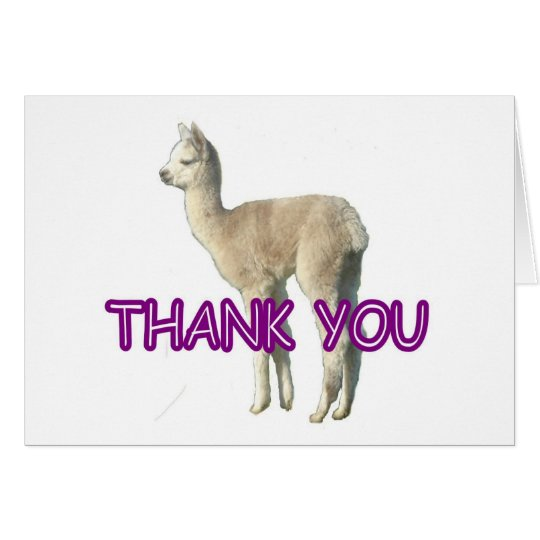 "An alpaca ""Thank You"" card"