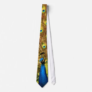 An Amazing Peacock Tie!  Click on this one!! Neck Tie