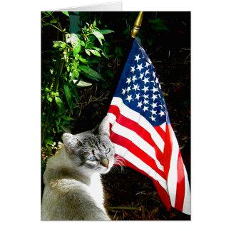 """An American Cat"" Greeting Card"
