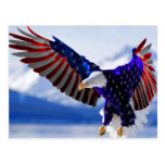An American Eagle Postcard