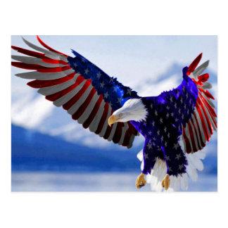 An American Eagle Post Card