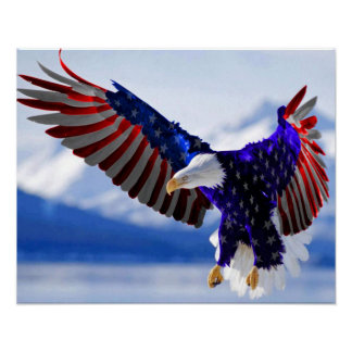 An American Eagle Poster