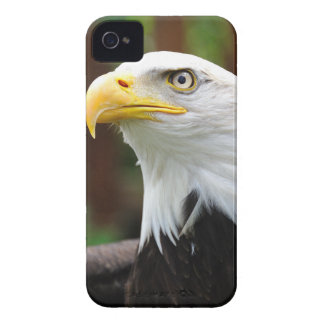 An American Patriot United States Bald Eagle Image iPhone 4 Case-Mate Case