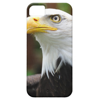 An American Patriot United States Bald Eagle Image iPhone SE/5/5s Case