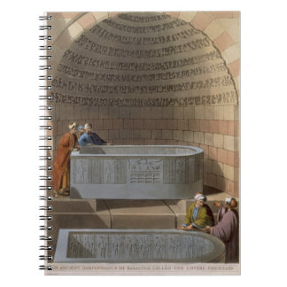 An Ancient Sarcophagus of Basaltes, called the Lov Notebooks
