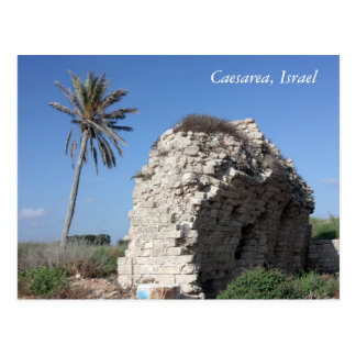 An ancient wall with a Palm tree, Caesarea, Israel Postcard