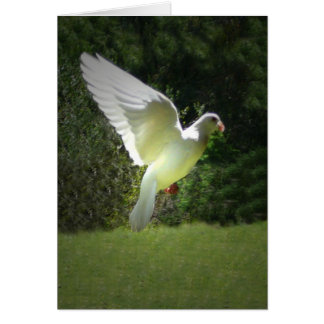 An Angel Greeting Card