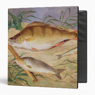 An Angler's Catch of Coarse Fish (oil on panel) Binder