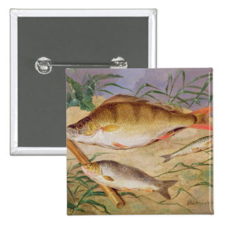 An Angler's Catch of Coarse Fish (oil on panel) Pinback Buttons
