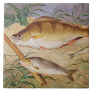 An Angler's Catch of Coarse Fish (oil on panel) Ceramic Tile