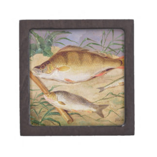 An Angler's Catch of Coarse Fish (oil on panel) Premium Jewelry Box