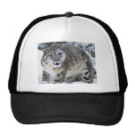 An Angry Snow Leopard Trucker Hat
