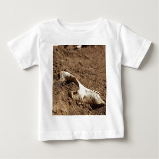 An animal skull covered with dry earth. baby T-Shirt