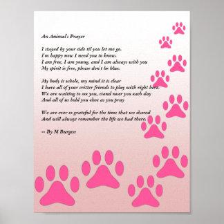 An Animal's Prayer - Pink Paws - Poster