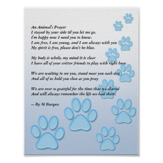 An Animal's Prayer Poster