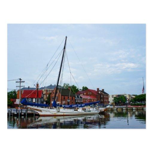 An Annapolis Sailboat Postcard