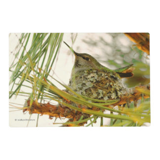 An Anna's Hummingbird Mother-to-Be Laminated Placemat