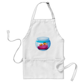 An aquarium with two orange fishes adult apron