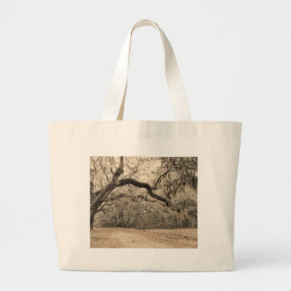 An Arch of Oakes Large Tote Bag