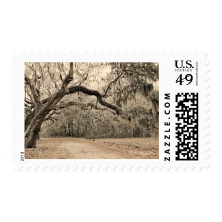 An Arch of Oakes Postage