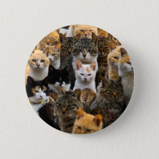 An Army of Cats, Aoshima Island, Japan Pinback Button