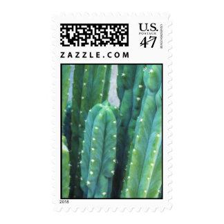 An Artist's California Cactus Favorite Postage
