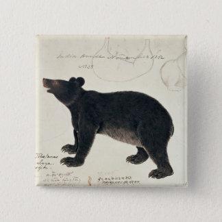 "An Asiatic Black Bear, ""Ursus Tibetanus"" Pinback Button"
