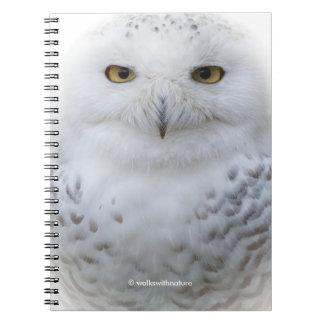 An Attentive Snowy Owl Spiral Notebook