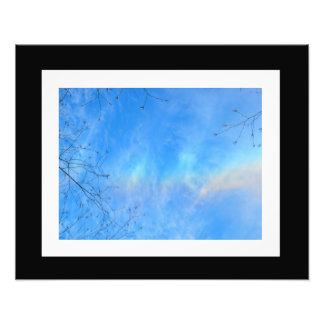 An Aurora in the Sky Photo #4
