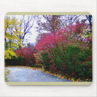 An Autumn Afternoon Walk Mousepads