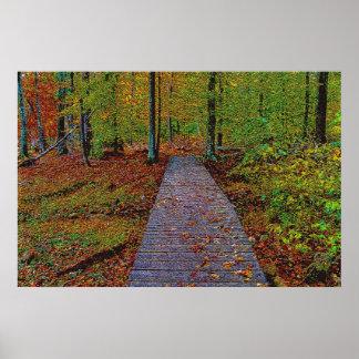 An Autumn Walk sketch Poster