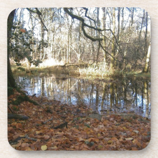 An Autumn woodland scene Beverage Coasters