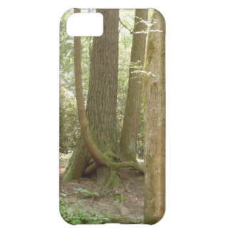 An Awkward Position (Trees) iPhone 5C Case