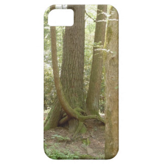 An Awkward Position (Trees) iPhone SE/5/5s Case